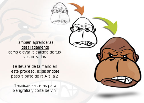 info — CursoDeCorel.com